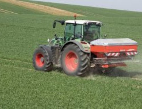 """Pflanzenkohle bringt """"negative Emissionen"""""""