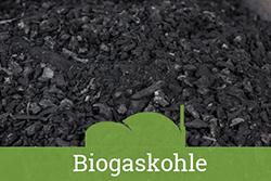 Teaser-Kat-Biogaskohle