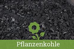 Teaser-Kat-Pflanzenkohle