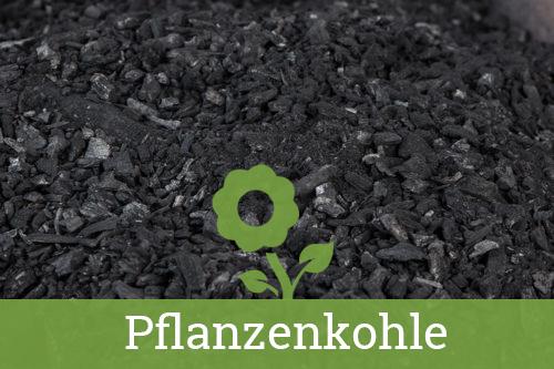 Was Ist Pflanzenkohle Pflanzenkohle Aus Der Börde